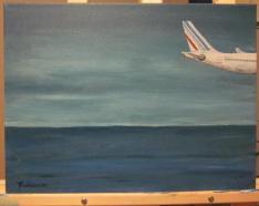 Avion au dessus de la mer